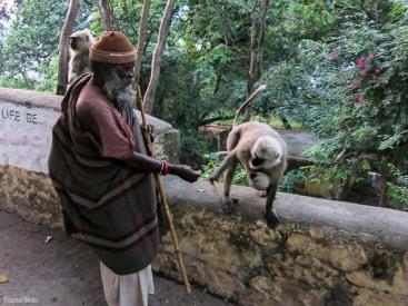 Monkey Baba