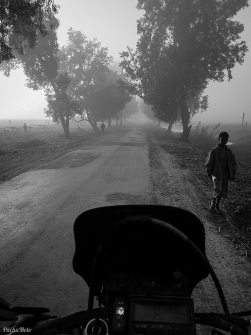 Misty morning heading away from the Bangladesh border